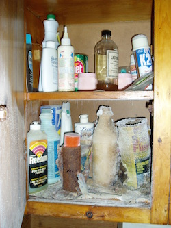 Organizing household chemicals
