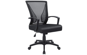Furmax-Office-Chair-with-Armrest-image