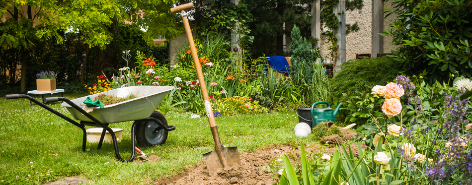 How To Prepare Flower Beds For New Planting