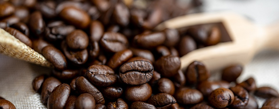 best-coffee-beans-for-you