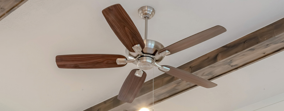 ceiling fan for cleaning