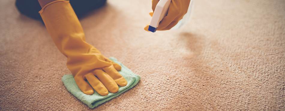 cleaning carpet with cloth