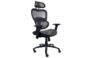 NOUHAUS-Ergo3D-Ergonomic-Office-Chair-image