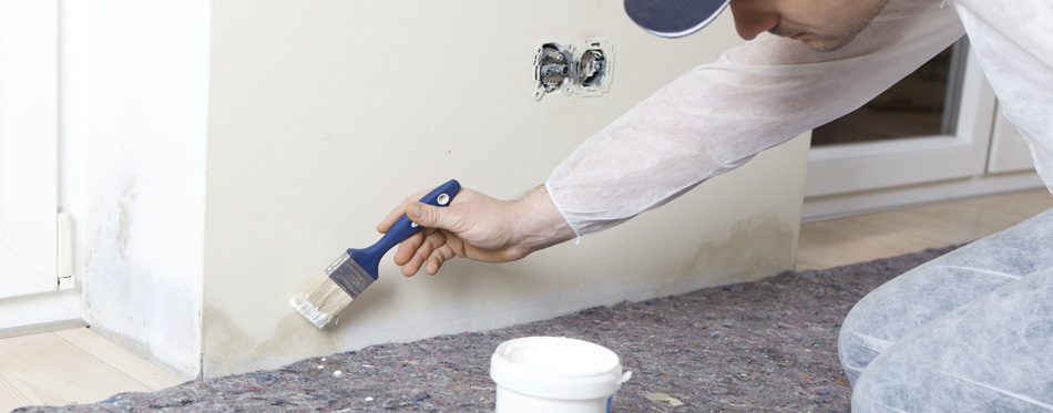 Preventing Mold And Mildew In Your Home