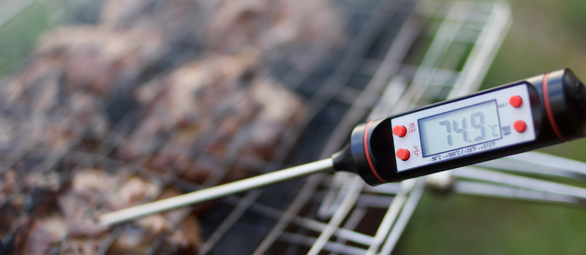 the best instant thermometer